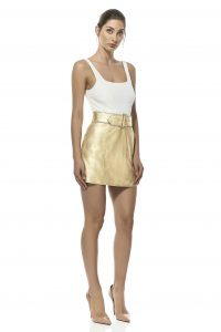 Skye Mini Skirt by Misha Collection